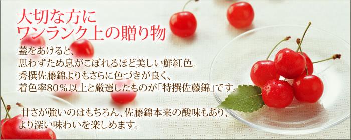 特撰佐藤錦