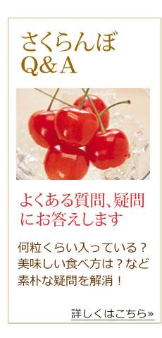 さくらんぼQ&A